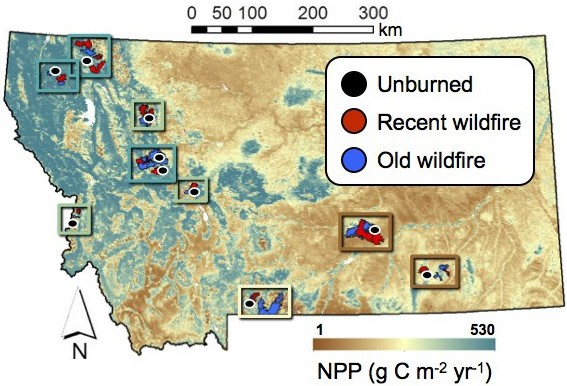 Oct. 2015: New paper in Ecosphere on wildfire, productivity, and plant diversity across scales