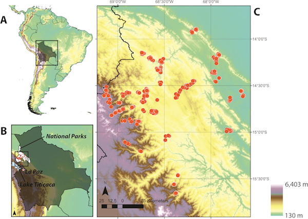 New paper in PLoS ONE on elevational beta-diversity gradients in the tropics